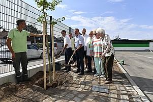 27. Juli: Ein Lebensbaum vor der Haupttribüne für den verstorbenen Ehrenratsvorsitzenden Kurt Georg Strattner.